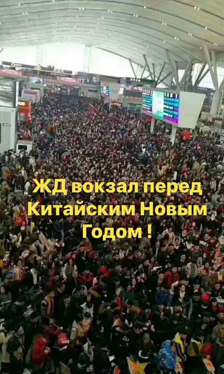 FB_IMG_1548519603618.jpg