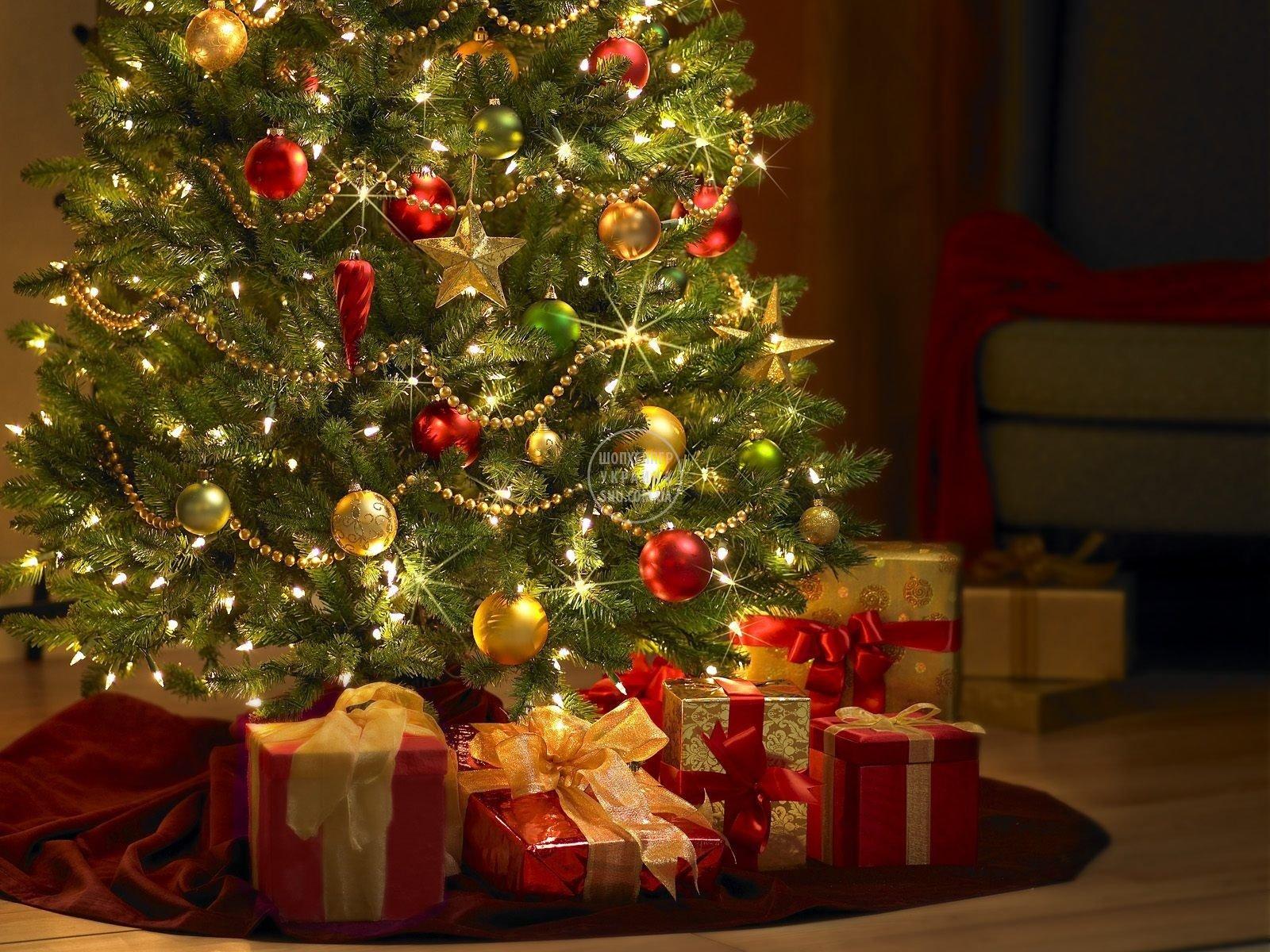 presents_under_the_tree.jpg