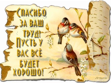 89032871_Spasibo_za_vash_trud_1010.png