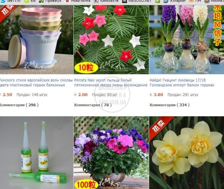 цветы и овощи.jpg