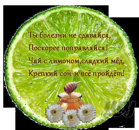 dolka-limona.png