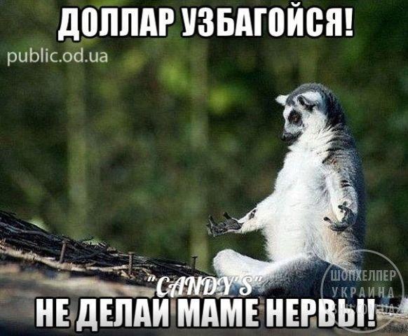 image (9).jpg