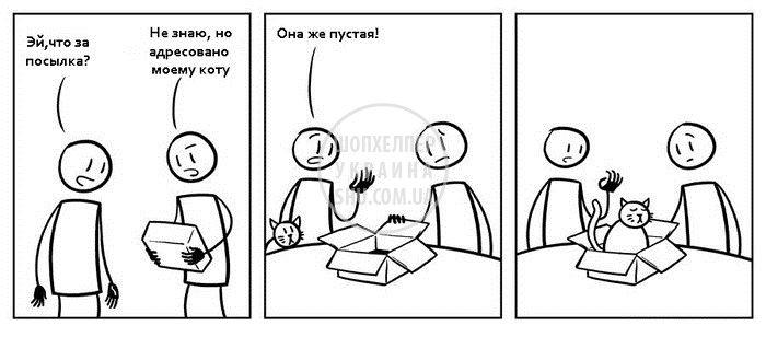 котэ-коробка-Комиксы-617237.jpeg